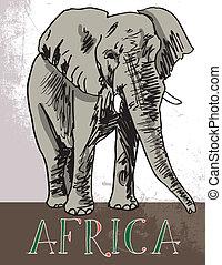 vecteur, illustration, afrique.