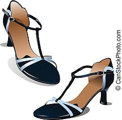 vecteur, illustration, shoes., femme, mode