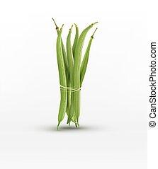 vecteur, isolé, gerbe, haricots, fond blanc, limite, vert