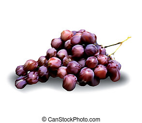 vecteur, isolé, raisins, white.