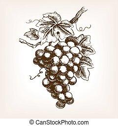 vecteur, main, croquis, style, dessiné, raisins, tas