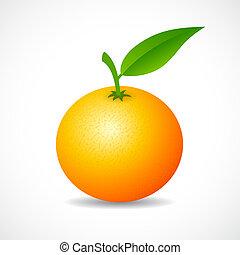 vecteur, mandarine, icône