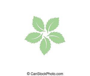 vecteur, menthe, feuilles, plat, icône