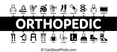 vecteur, minimal, infographic, bannière, orthopédique