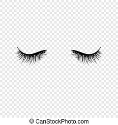 vecteur, noir, faux, transparent, fond, isolé, illustration, eyelashes.
