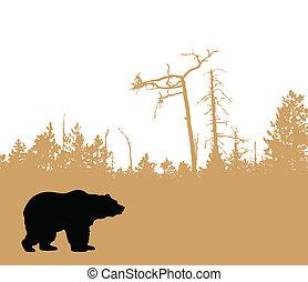vecteur, ours, silhouette