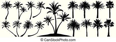 vecteur, palm., arbre, palmiers, ensemble, silhouette., noix...