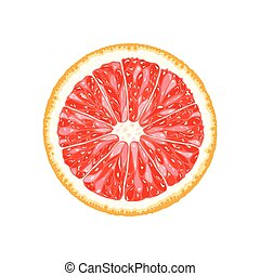 vecteur, pamplemousse, pomelo, slice., illustration, de,...