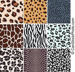vecteur, peau animale, textures
