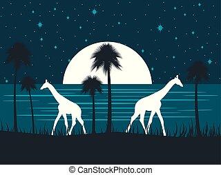 vecteur, plage., girafe, sky., étoilé, moon., illustration, rivage, entiers, palmiers, nuit
