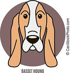 vecteur, portrait, basset, illustration, hound.