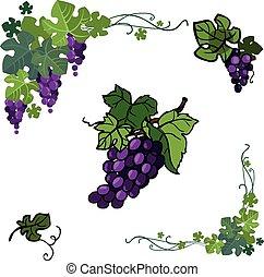 vecteur, raisin, icône, isolé, ensemble, blanc, couleur, arrière-plan.