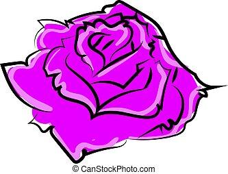 vecteur, rose, arrière-plan., illustration, pourpre, blanc