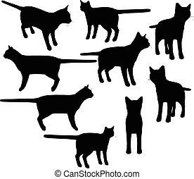 vecteur, silhouette, collection, chat