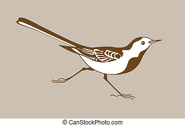 vecteur, silhouette, fond, wagtail, brun, illustration