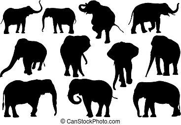 vecteur, silhouette, illustration, éléphant