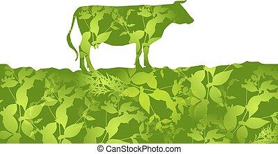 vecteur, silhouette, vache, paître, pasture., champ, herbe, ...
