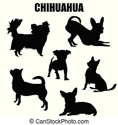 vecteur, silhouettes, chihuahua, chien, icônes