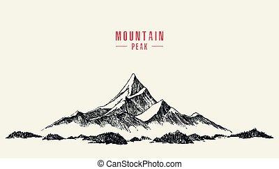 vecteur, sommet montagne, forêt pin, main, dessiné