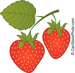vecteur, strawberry., strawberries.