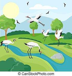 vecteur, troupeau, main, naturel, dessiné, grues, vie sauvage, oiseau, illustration, paysage.