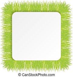 vecteur, vert, illustration, herbe