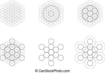 vecteur, vie, cube, transition., géométrie, shapes., metatron, géométrique, ensemble, conceptions, fleur, sacré, éléments