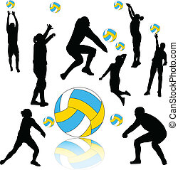 vecteur, -, volley-ball, collection