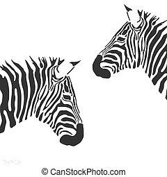 vecteur, zebra