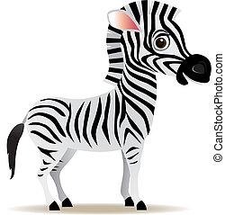 vecteur, zebra, dessin animé