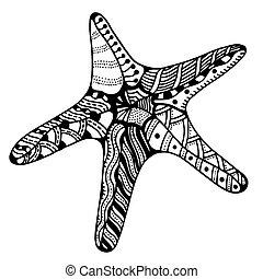 vecteur, zentangle, etoile mer