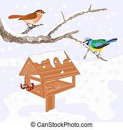 vecto, tema, aves, invierno, alimentador