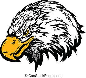 vector, águila, cabeza, illustrati, mascota