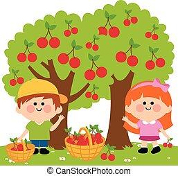 vector, árboles., debajo, ilustración, cerezas, cereza,...