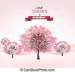 vector., 春, 開くこと, sakura, 背景, 木。