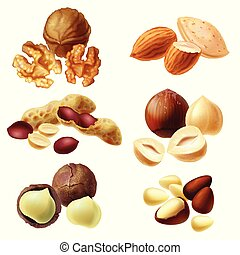 Vector 3d realistic set of various nuts