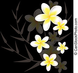 vector abstract floral background with frangipani