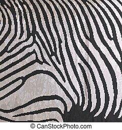 vector, abstract, oud, papier, achtergrond, met, dier, zebra print, f