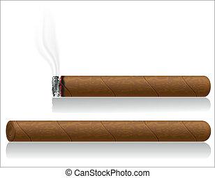 vector, aislado, ilustración, cigarros