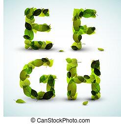 vector, alfabeto, cartas, hecho, de, leafs