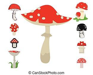 Vector amanita mushrooms dangerous set poisonous season toxic fungus food illustration.