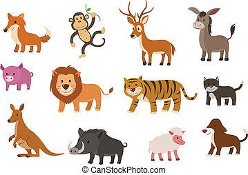 vector, animal, colección