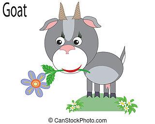 Vector animal, goat