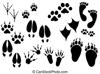 Vector - animal trails - collection of animal and bird...