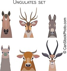 Vector animals heads set. Lama deer antelope donkey horse cow
