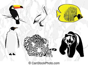 Vector animals set on white background