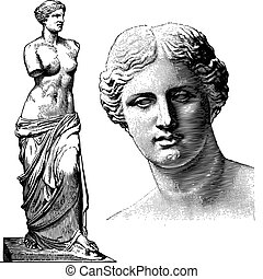 Vector illustration of the greek Aphrodite statue and closeup of her head.