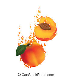 Vector Apricots Falling in Liquid