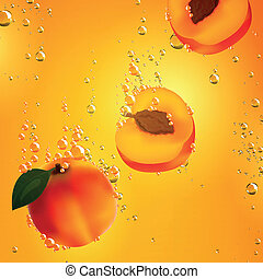 Vector Apricots Falling in Liquid - Vector Illustration of...