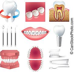 vector, atención sanitaria, conjunto, stomatology, diente
